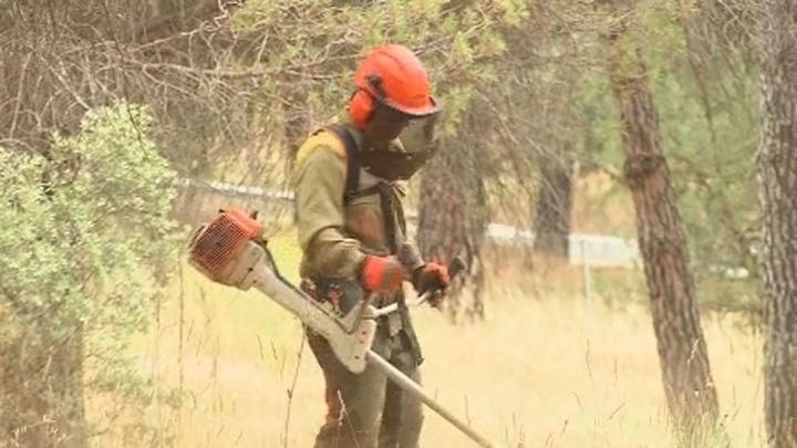 Desbrozan los montes en la Comunidad de Madrid para evitar incendios