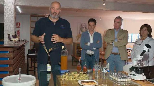 Cerveza artesanas hechas en Madrid