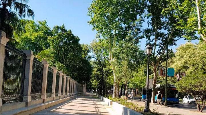 Abre al público el recorrido peatonal entre la Plaza de Murillo y la Puerta del Rey