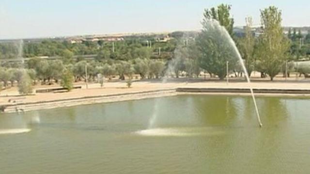 Parque Juan Carlos I: oasis en Madrid