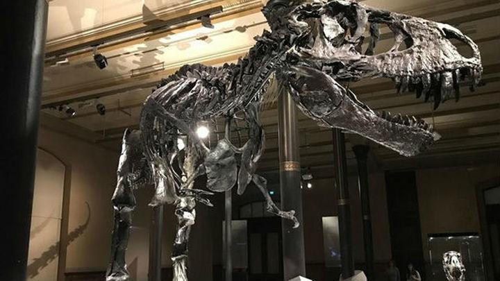El asteroide que aniquiló a los dinosaurios podría haber llevado a la Tierra a dos años de oscuridad