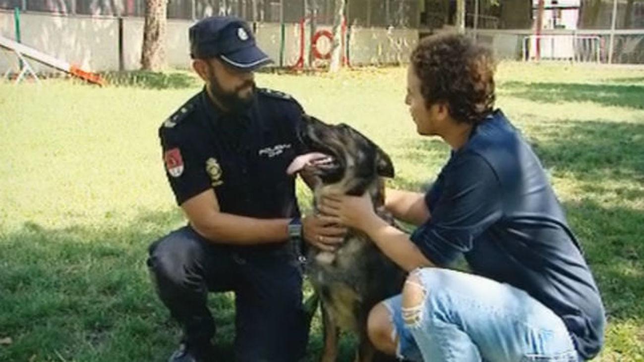 La perra policía Laika se jubila