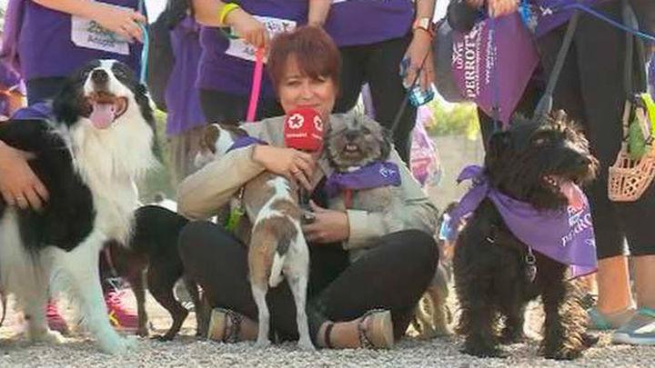 Más de 4.000 personas participan en la carrera Perrotón que aboga por la adopción responsable
