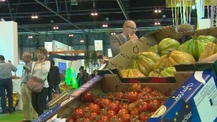Más de 1.500 empresas y 60.000 profesionales en la Feria de Frutas y Hortalizas