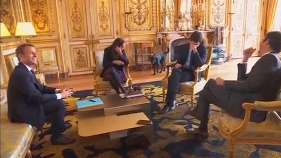 El perro de Macron se orina en una reunión del  Gobierno francés
