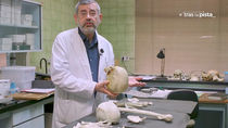 Un viaje al Instituto Anatómico Forense de Madrid