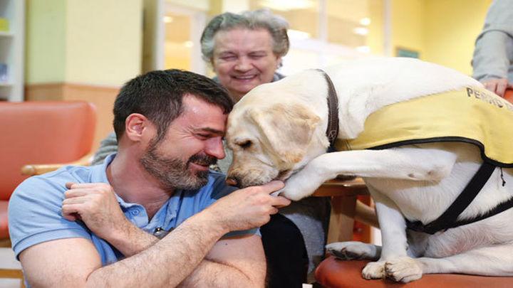 La Comunidad incorpora la terapia asistida con animales para mayores dependientes o con alzheimer