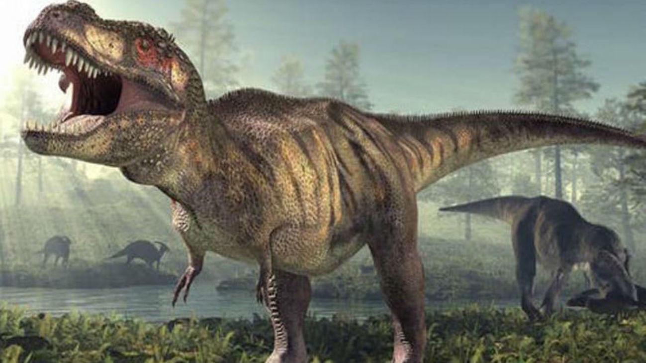 Las aves dan claves de la locomoción de dinosaurios como Tirannosaurus Rex
