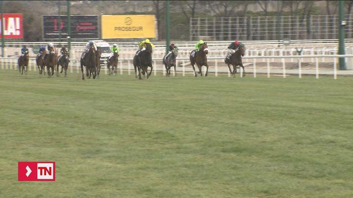 Las carreras de caballos vuelven a La Zarzuela