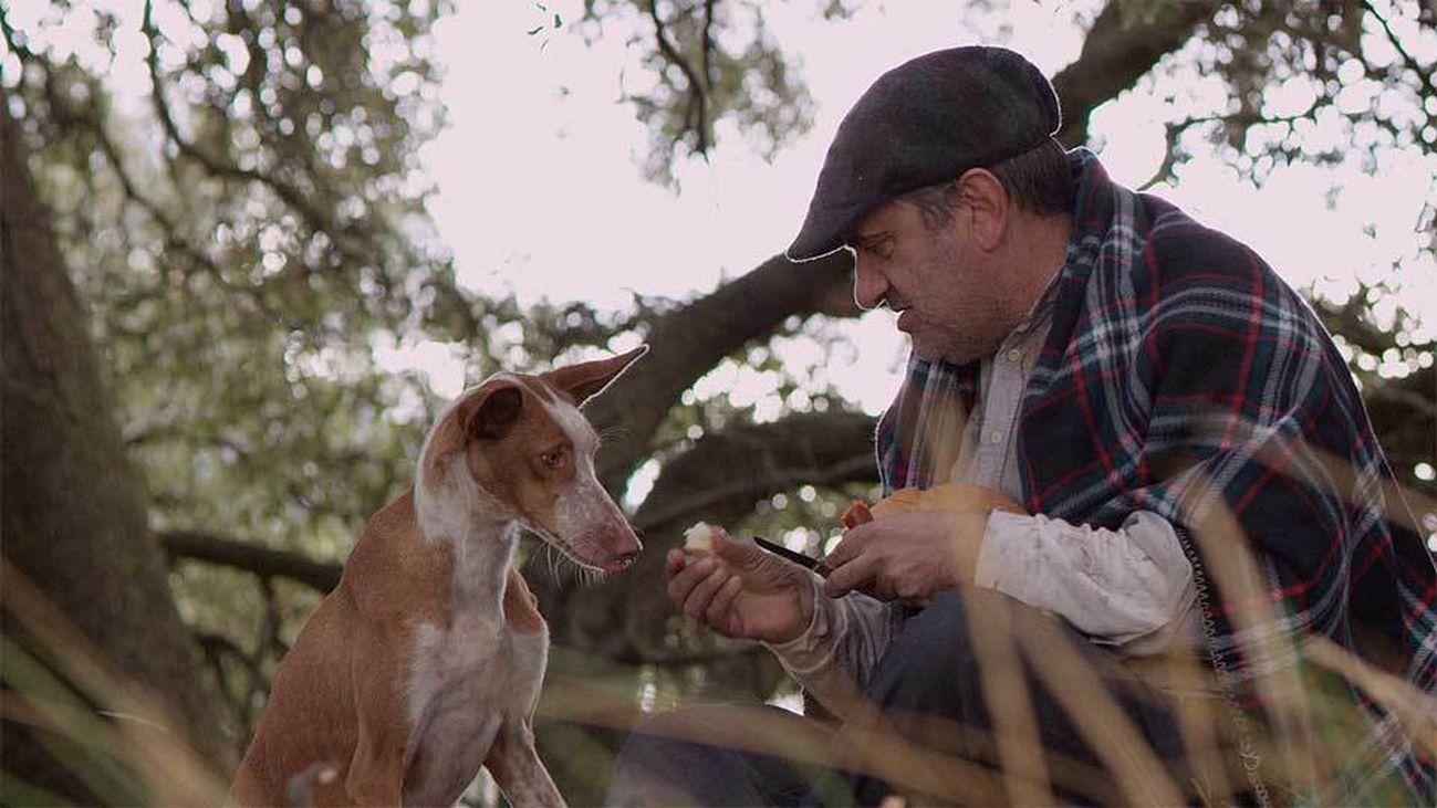 laOtra en corto: 'Cocote, historia de una perro', de Pacheco Iborra