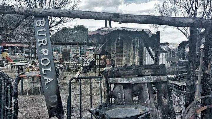 Se incendia la protectora de animales Burrolandia