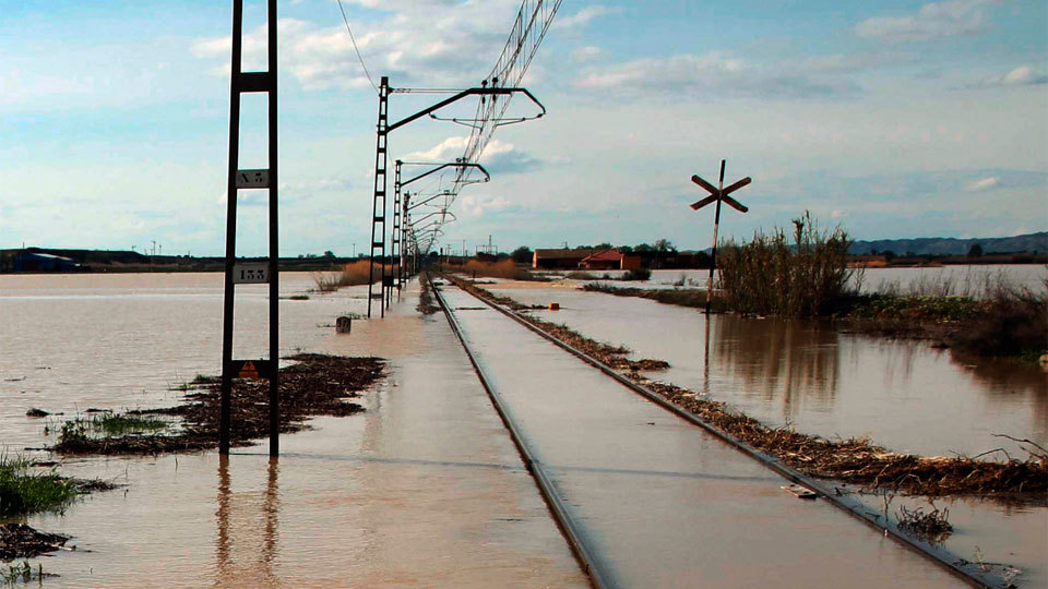 La riada del Ebro anega miles de hectáreas y ahoga al ganado