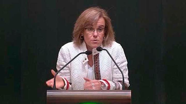 """El Pleno municipal madrileño pide """"buscar alianzas"""" en la Asamblea tras el caso Cifuentes"""