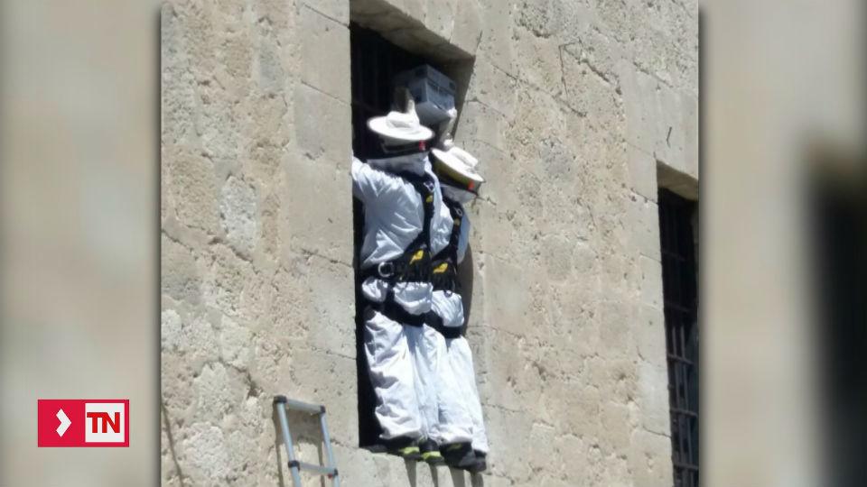 Pinto: los bomberos denuncian intrusismo