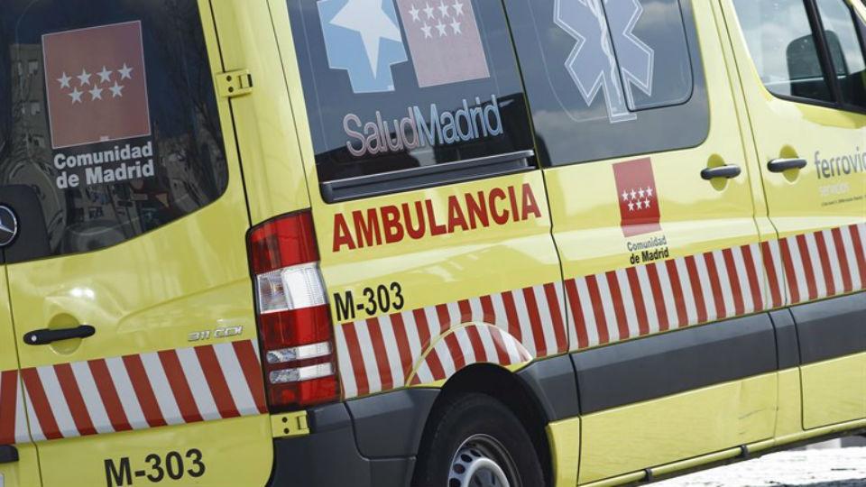 Un hombre de 80 años sufre paraplejia tras caer de un árbol en La Hiruela