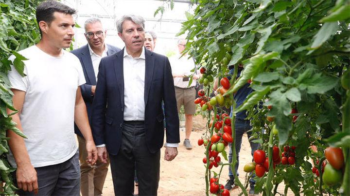 La Comunidad batió en 2017 su récord de exportaciones alimentarias, al superar los 1.500 millones
