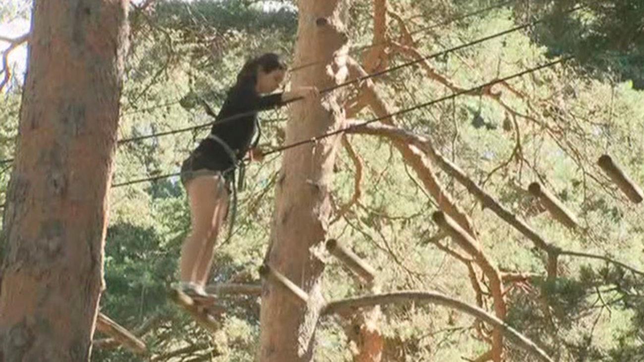 Diversión en las copas de los árboles en Cercedilla