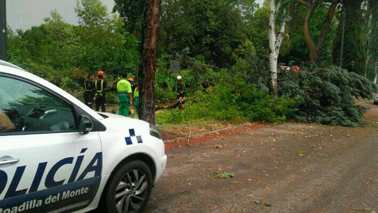 Los bomberos efectúan más de 320 salidas por la tormenta