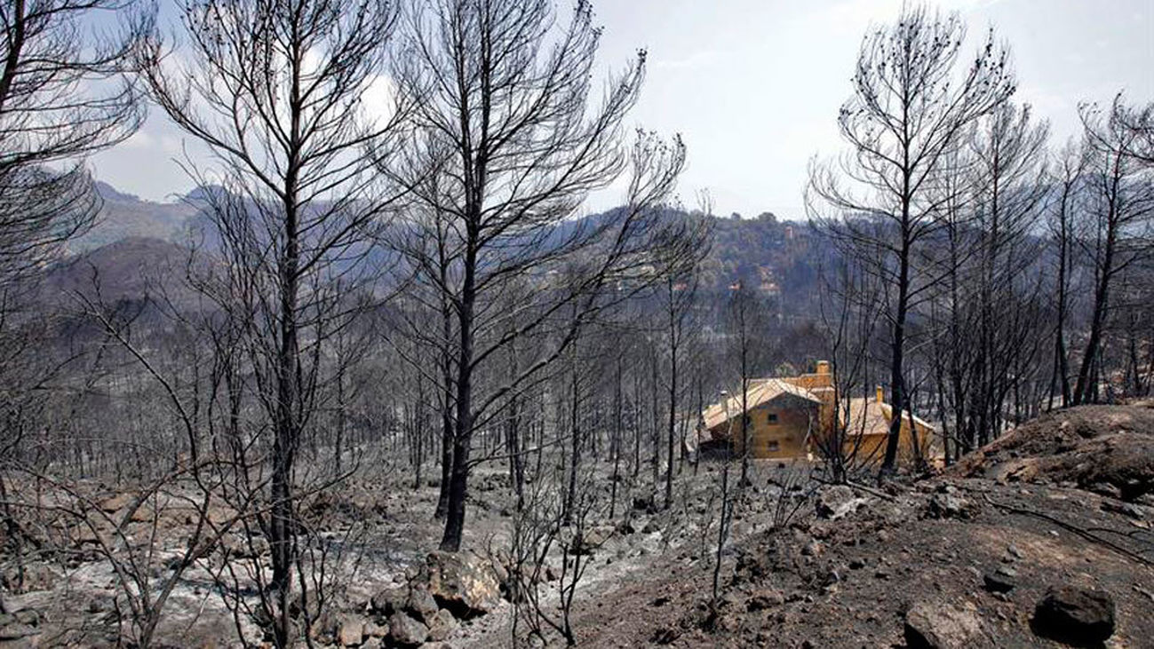 El incendio de Llutxent afecta a seis municipios, principalmente a Gandia con unas 1.000 hectáreas