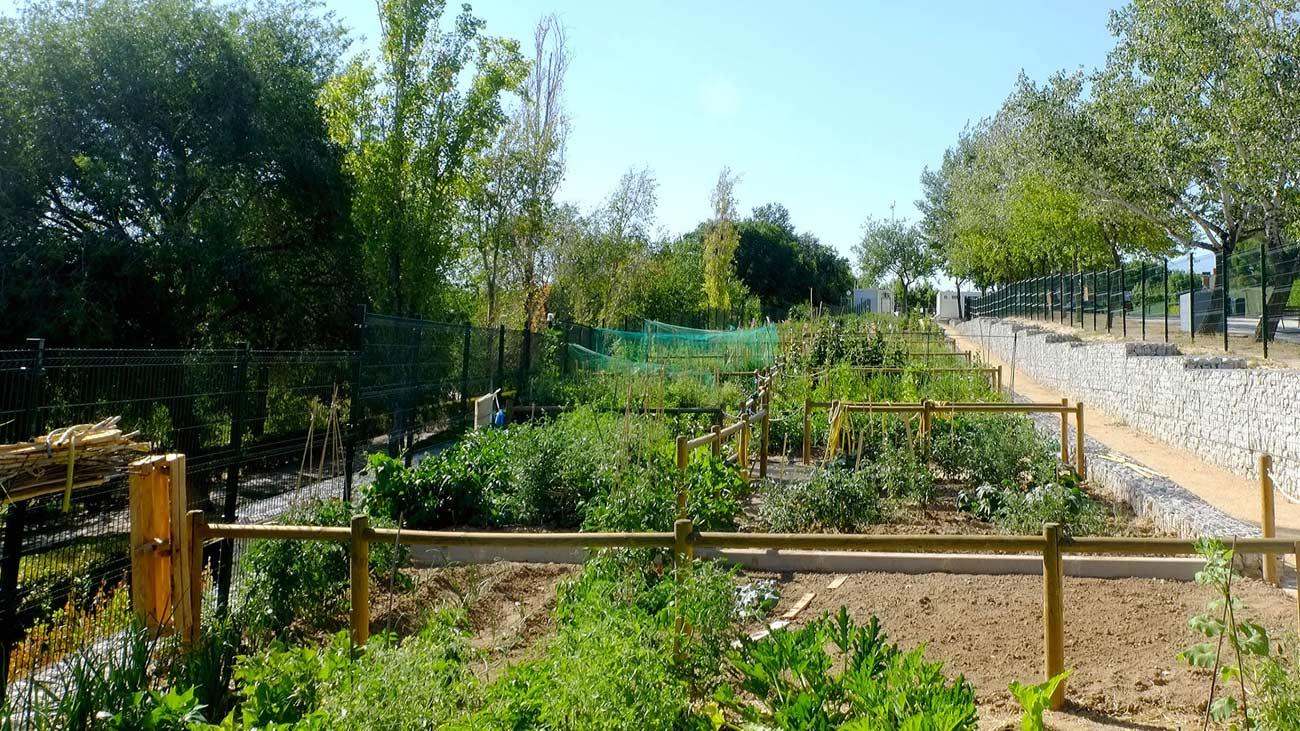 Alcobendas creará 80 nuevos huertos urbanos