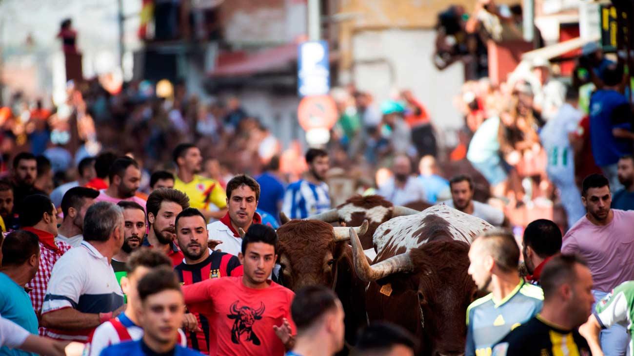 Nueve heridos en un accidentado encierro en San Sebastián de los Reyes