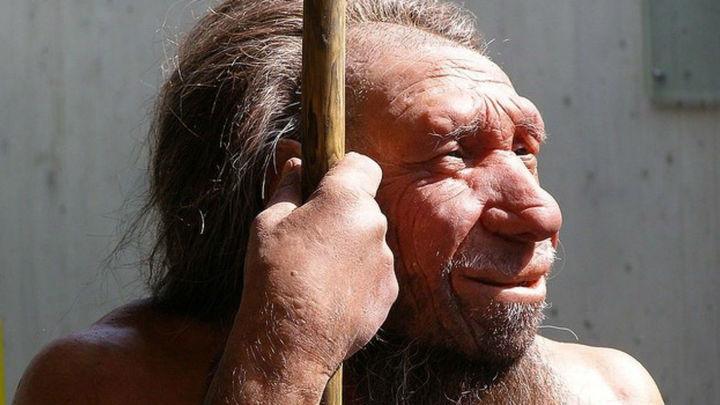 El frío contribuyó a la extinción de los neandertales