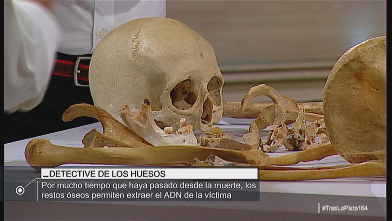 La información que arrojan los huesos a los médicos forenses