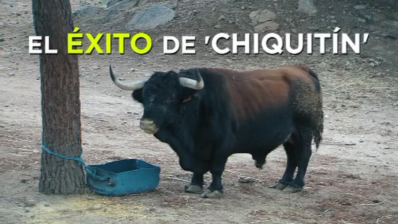 El toro más pequeño del mundo es madrileño