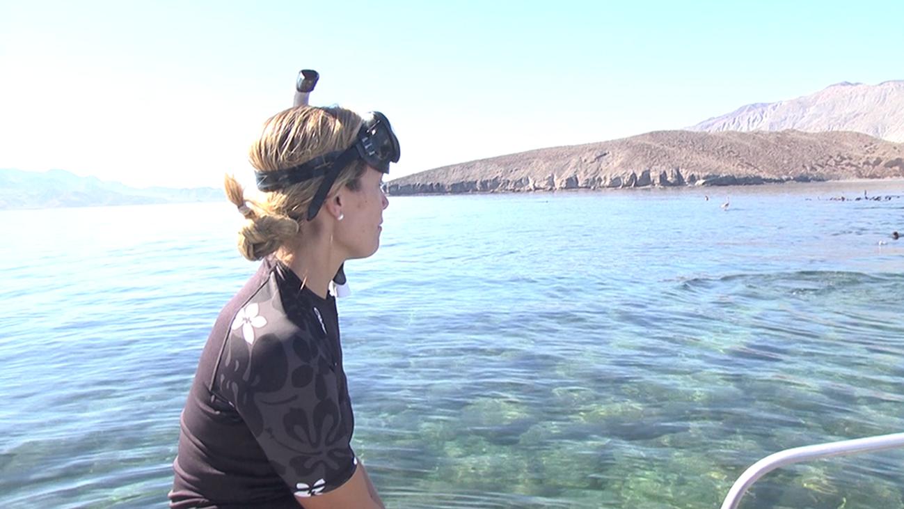 Bahía de los Ángeles: el acuario del mundo