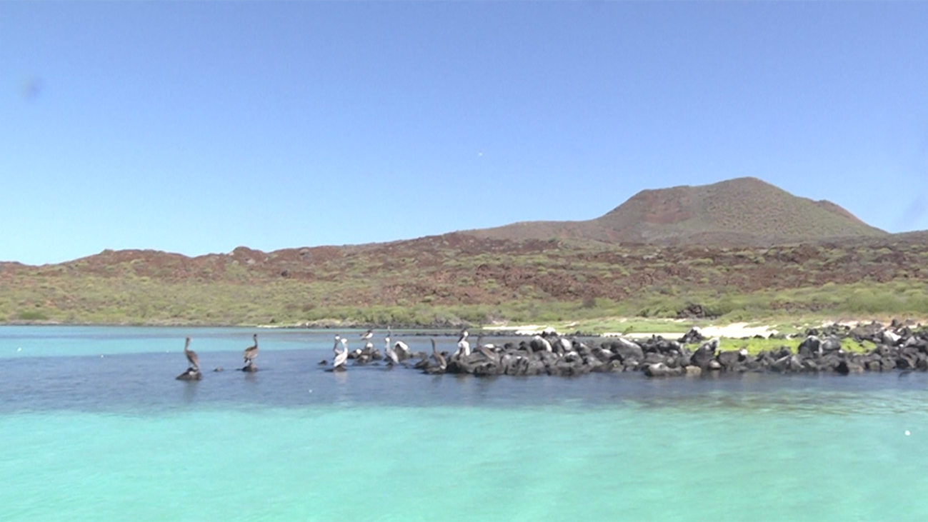 Playas vírgenes y aguas turquesa en el Parque Nacional de Loreto