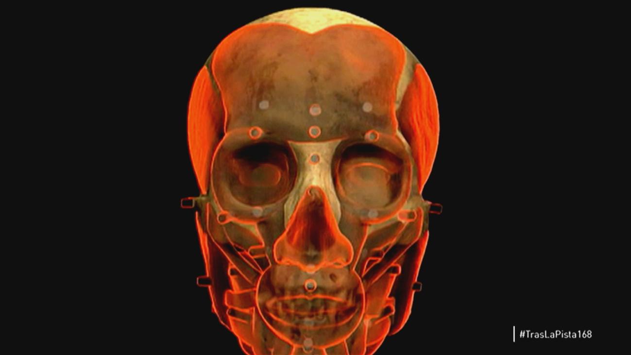 La reconstrucción de una cara a través del cráneo