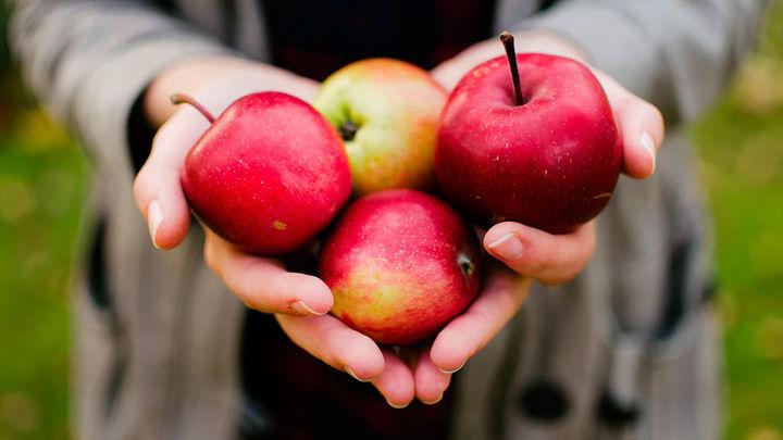 Comer dos manzanas al día ayuda a mantener el colesterol bajo