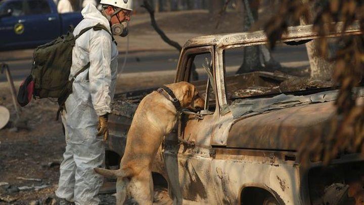 Suben a 83 los muertos en los incendios de California