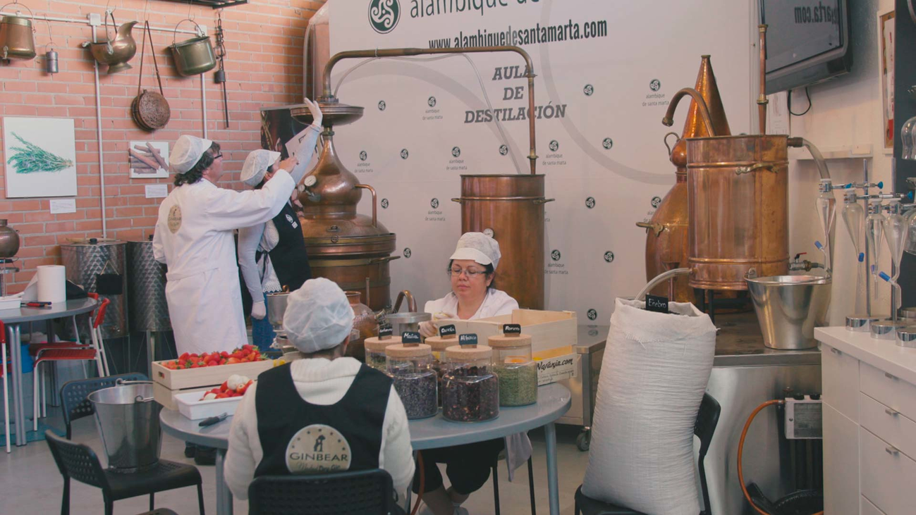 Así se elabora GinBear, la ginebra de Madrid