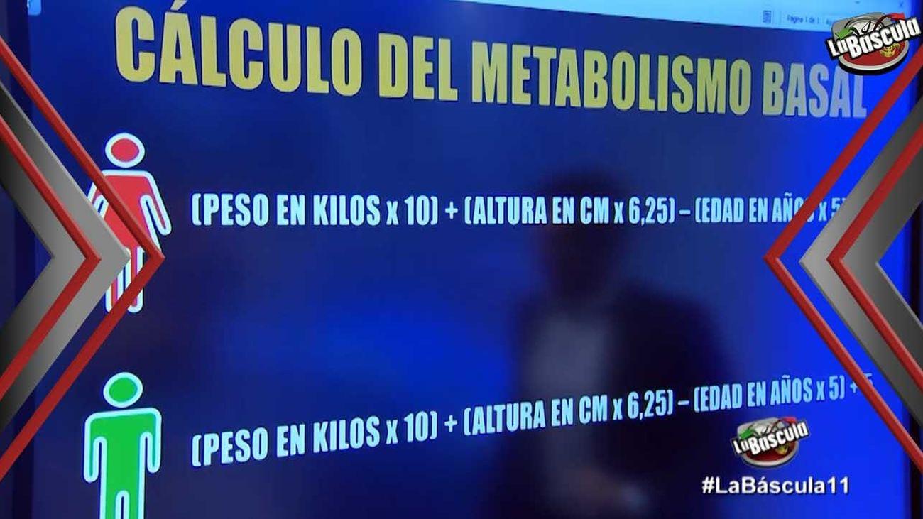 Aprende a calcular el metabolismo basal