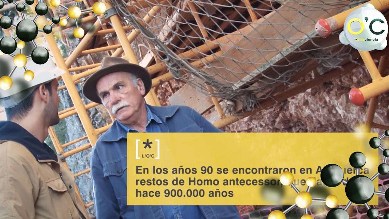 """El """"Homo Antecessor"""", una especie de homínido descubierto en Atapuerca"""