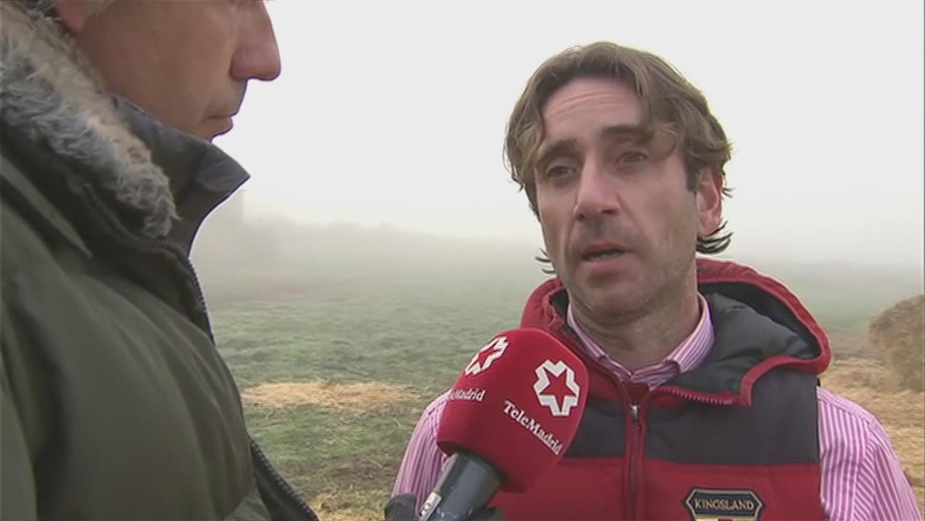Un ganadero de Colmenar teme que sacrifiquen sus vacas tras su desahucio