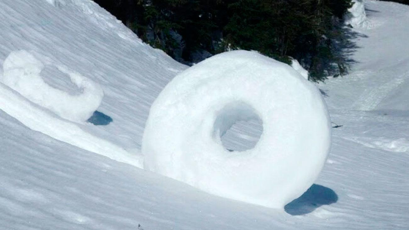 Rollitos de invierno