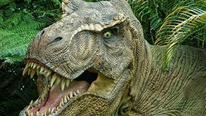 El dinosaurio depredador de gran tamaño más antiguo procede de los Alpes italianos