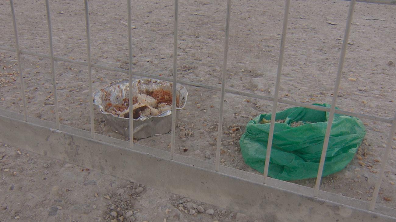 Muere el anciano atacado por tres perros rottweiler en Vallecas