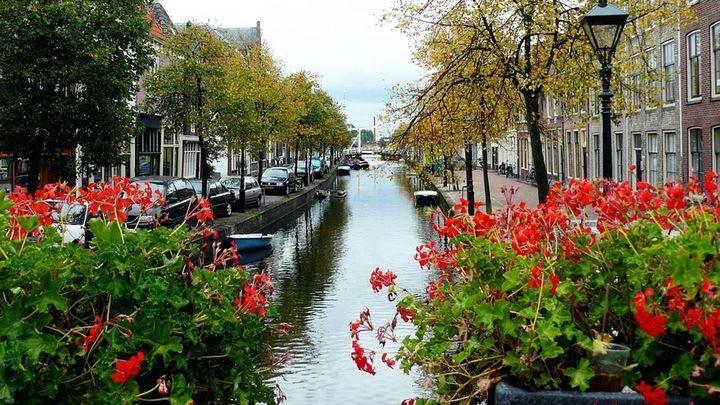 Eures: ¿Quieres saber cómo vivir y trabajar en Países Bajos?