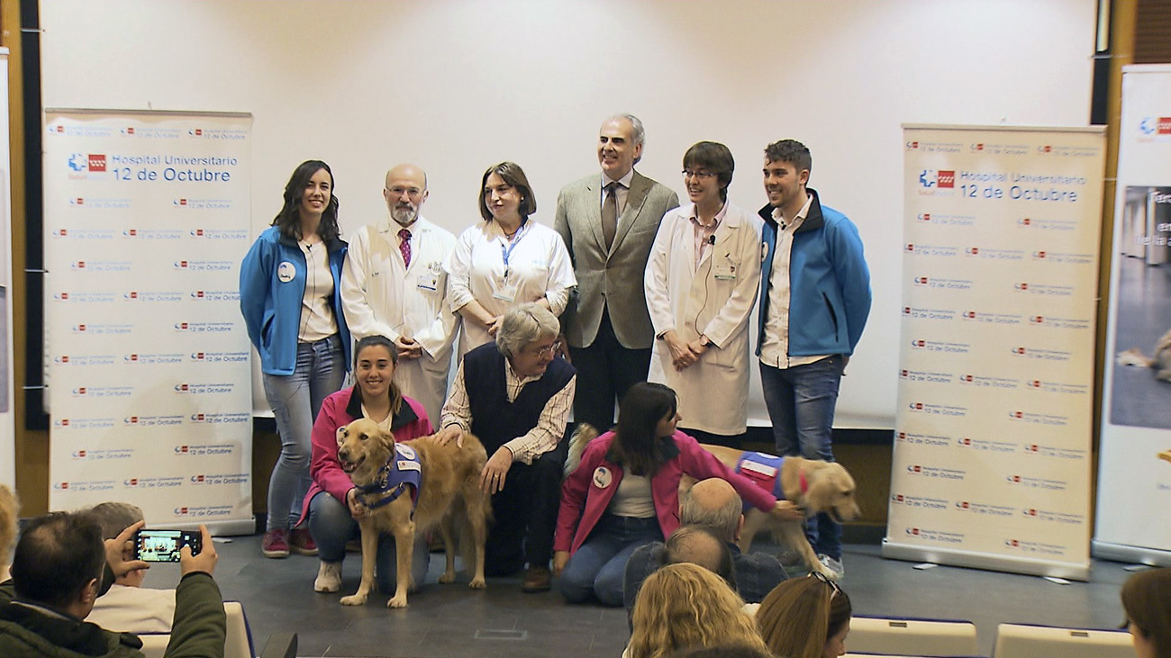 Éxito de la terapia asistida con perros para rehabilitar a pacientes alcohólicos