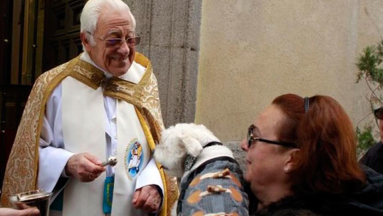 Cientos de mascotas reciben la bendición en el día grande de San Antón