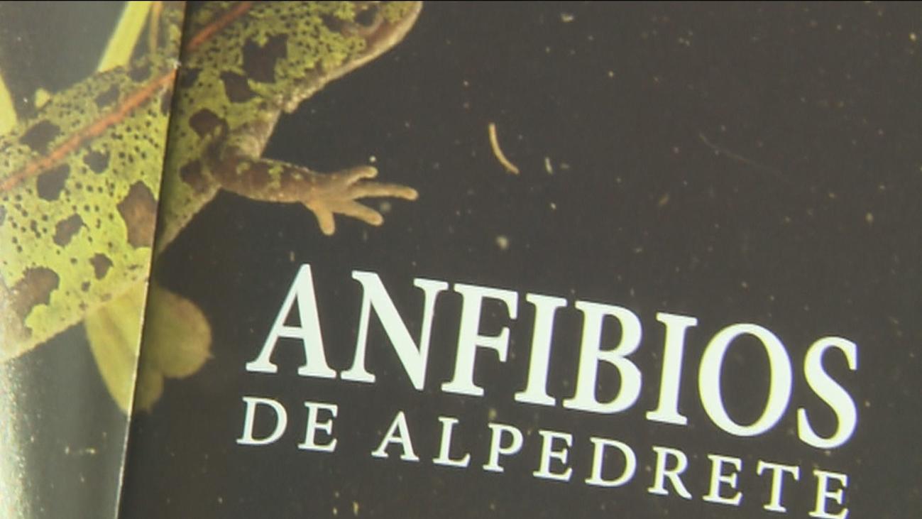 Los humedales de Alpedrete, hogar del 60% de especies de anfibios de Madrid