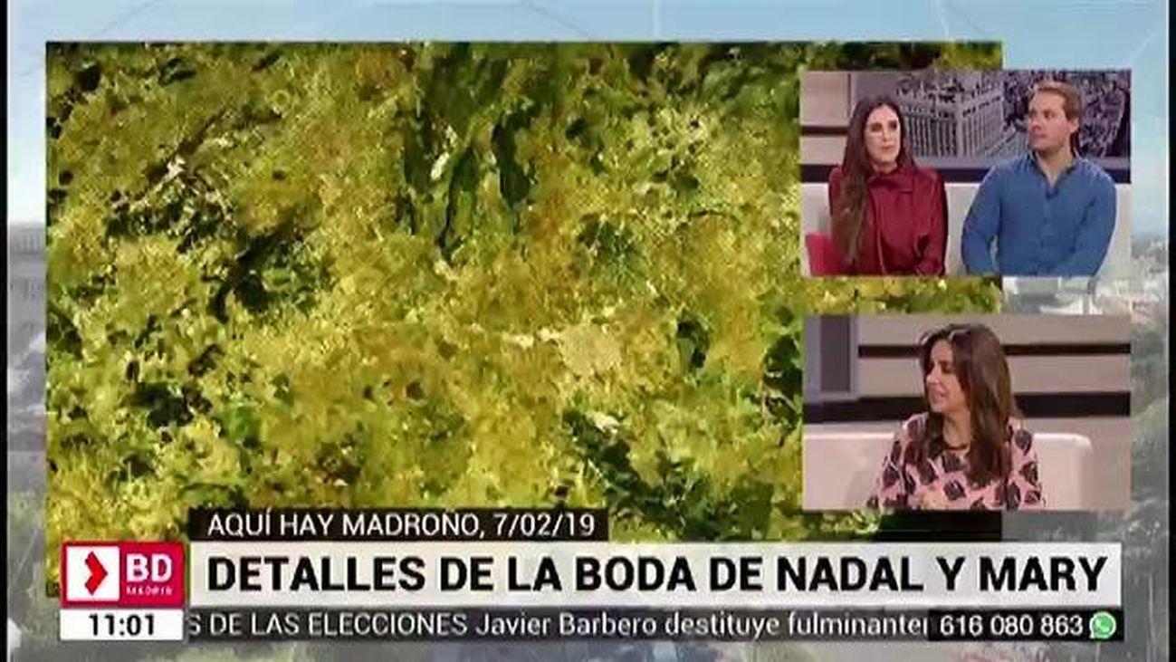 Buenos Días Madrid 08.02.2019
