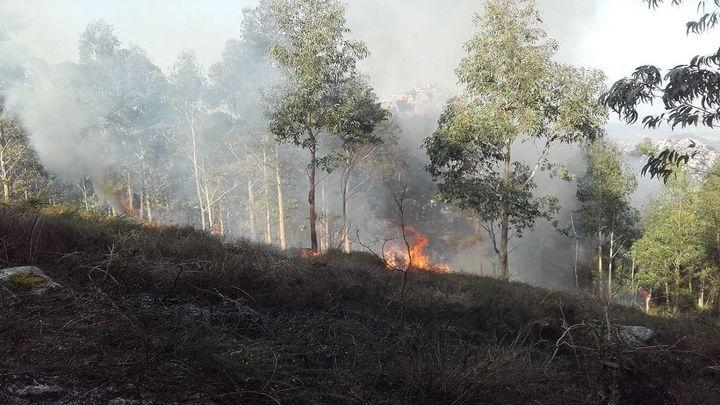Alerta en Cantabria por los 29 incendios forestales activos