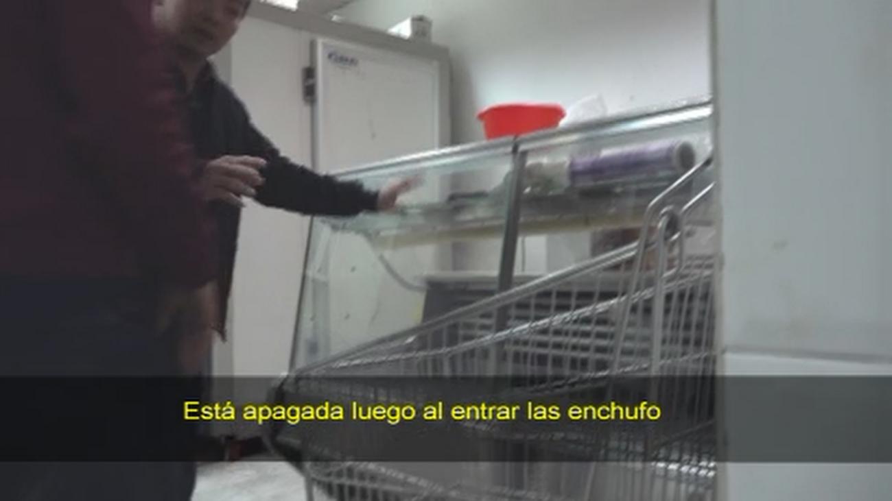 Insectos, carne en mal estado y suciedad en una carnicería de Usera