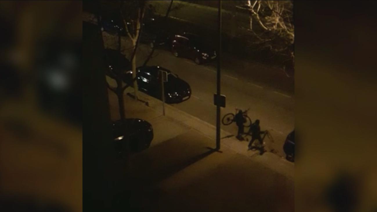 Cuatro ladrones roban bicicletas por valor de 42.000€ de una tienda de Pozuelo