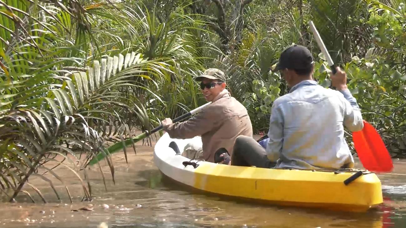 Paseo en barca por los manglares de Koh Kong