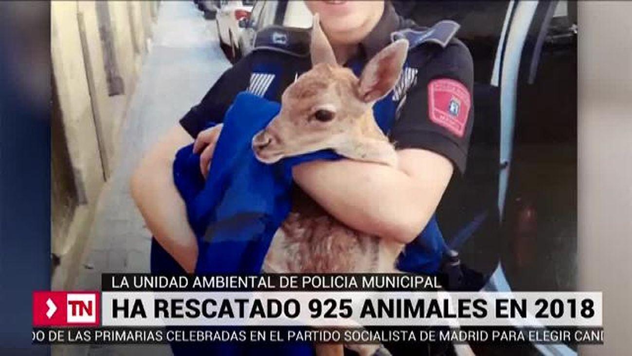 Telenoticias Fin de Semana 09.03.2019